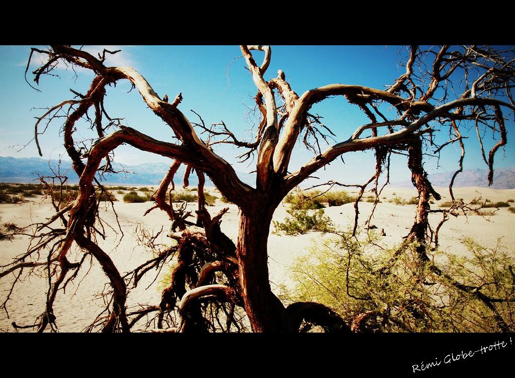 IMG_5524-002-deathvalley