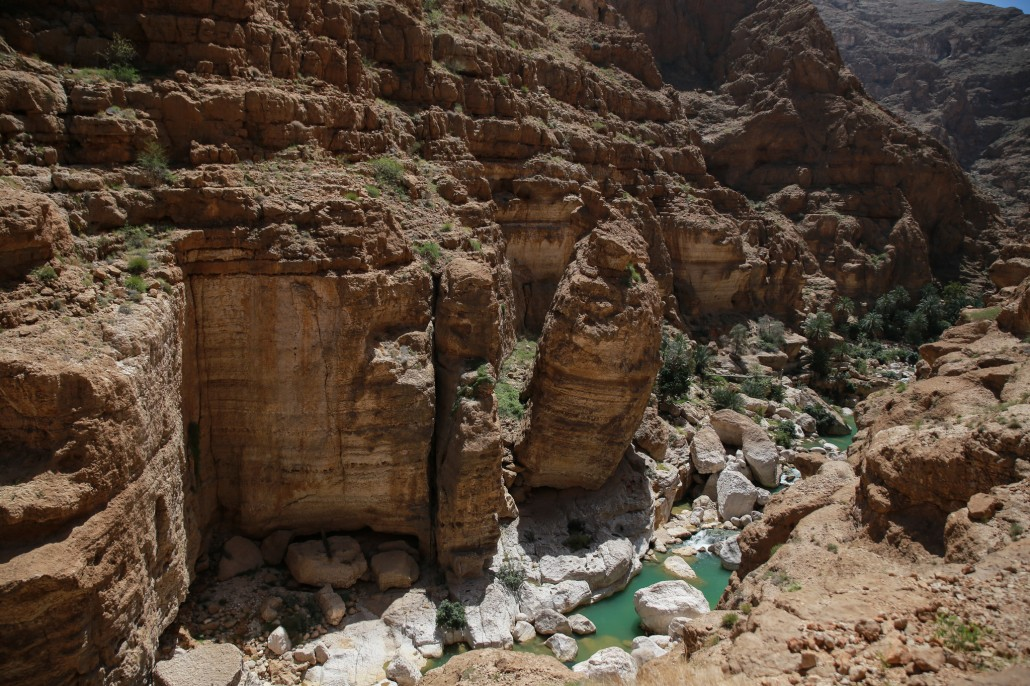 The best of the wadi