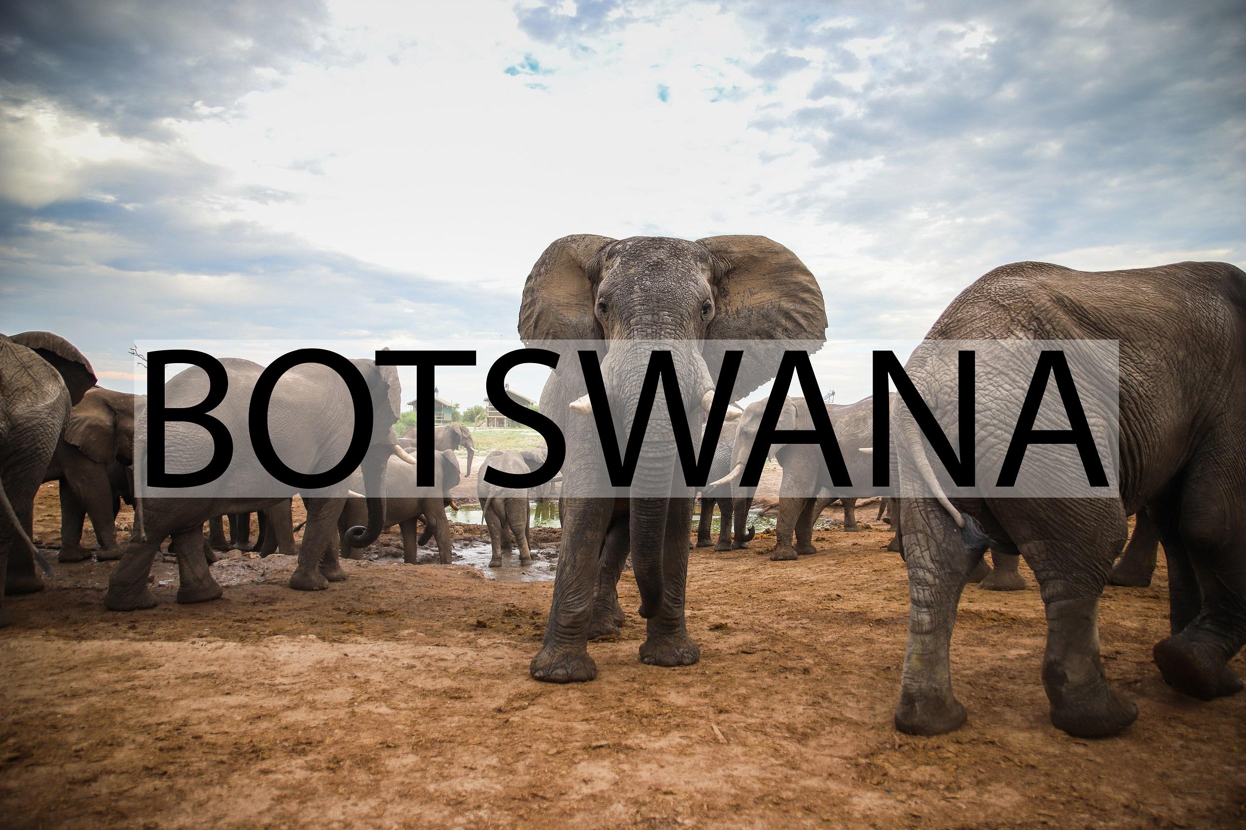 Vignette Botswana HD - Copie